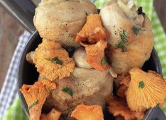 pollo e funghi gallinacci